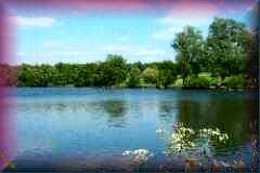 Weald Park
