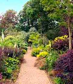 Abbey Dore Gardens