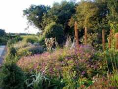 IvyCroft Garden