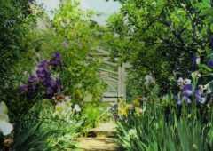 Stocton Bury Gardens