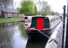Swan Libne