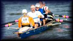 Cygnet