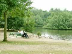 Westpark Lake